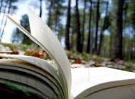 Nature & Writing