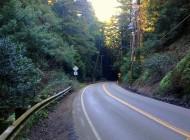 Redwood Road near Grizzly Peak